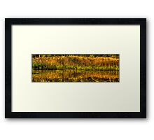 Reflections In Time - Tidbinbilla Wetlands, Canberra ACT - The HDR Experience Framed Print