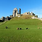 Corfe Castle (National Trust) by hootonles