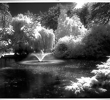 Infrared in the Park by Photo-Bob