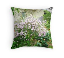 Geraldton Wax - Australian Native  Throw Pillow