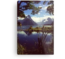 Milford Sound in Fiordland National Park Metal Print