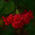 Dancing in red skirt by Kornrawiee