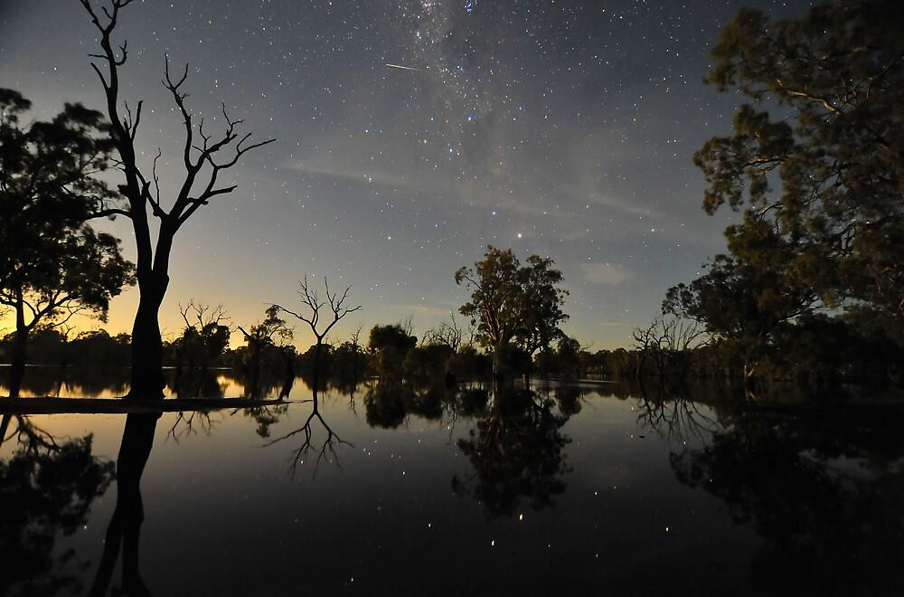 Poocher Moonrise by Wayne England