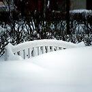 White bench by Bluesrose