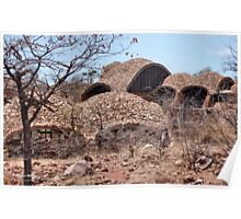 Series: MAPUNGUBWE NATIONAL PARK - World Heritage Site Poster