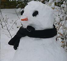 Snowman by prmorgan
