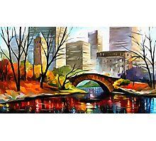 Central Park - New York Photographic Print