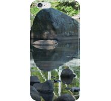 Rock Fish Reflection iPhone Case/Skin