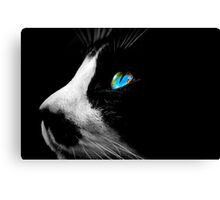 Black Tuxedo cat with Blue eyes Canvas Print