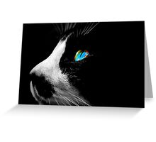 Black Tuxedo cat with Blue eyes Greeting Card