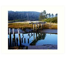 reflecting bridge Art Print