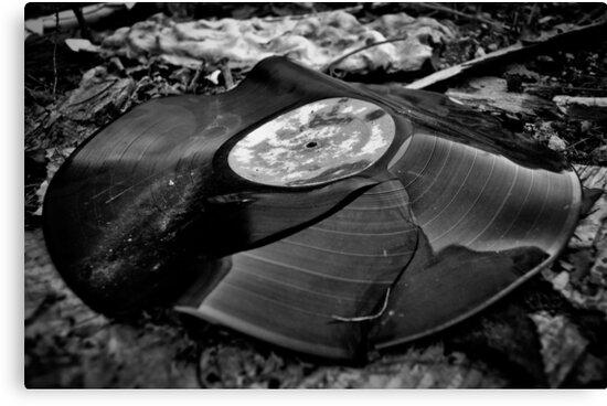 Broken Vinyl Record  by GarethWilton