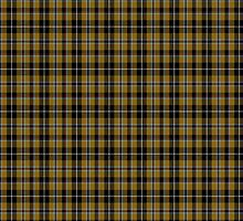 00173 Cornish National (English District) Tartan  by Detnecs2013