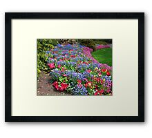 Memories of Late Spring Framed Print