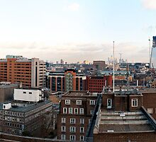 London Panorama & The Shard by Darren Bell