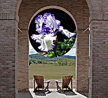 Portico and Iris by RobertSander
