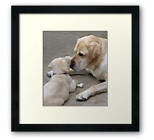 Getting to Know You Framed Print