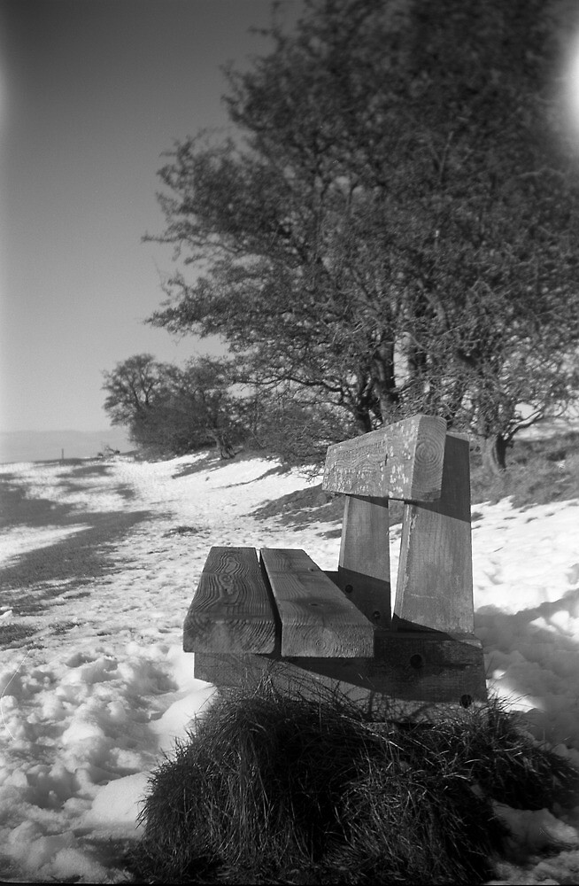 Bench in the Snow, Waseley Hills Park by Matthew Walters