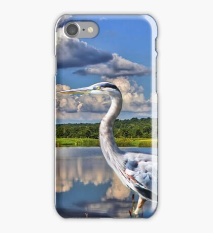 Heron in the Water BEAUTIFUL PILLOWS AND OR TOTE BAGS PICTURE -CARD ECT iPhone Case/Skin