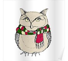 Funny owl in a colorful scarf. Poster