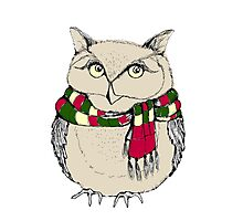 Funny owl in a colorful scarf. Photographic Print