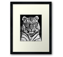 Tiger in Your Face Framed Print