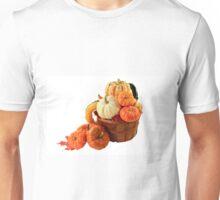Pumpkins and squashes Fall arrangement Unisex T-Shirt