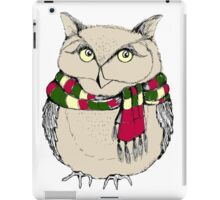 Funny owl in a colorful scarf. iPad Case/Skin