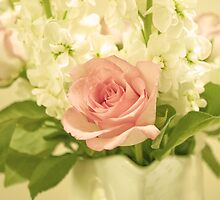 Antique Pink Rose by DExPIX