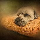 Let Sleeping Dogs Lie  by Edge-of-dreams