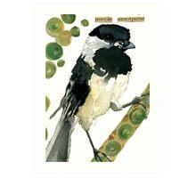 Poecile Atricapillus (Black Capped Chickadee) Art Print