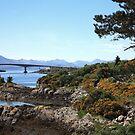 Skye Bridge by Franco De Luca Calce