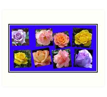 Roses of Many Colours Collage Art Print