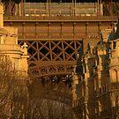 Paris - Eiffel Tower.  by Jean-Luc Rollier