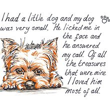 I had a little...Yorkshire Terrier Photographic Print