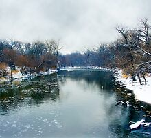 Des Plaines Rive in Winter, Riverside, Illinois by brian gregory