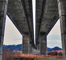 Under the highway by zumi