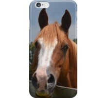Holly Springs iPhone Case/Skin