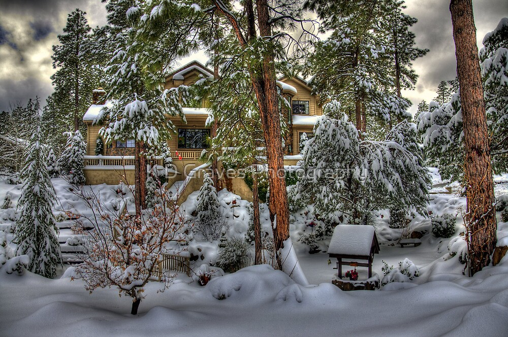 Chalet Of The Pines by K D Graves Photography