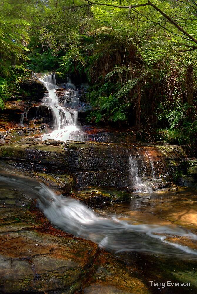 The Cascade Leura by Terry Everson