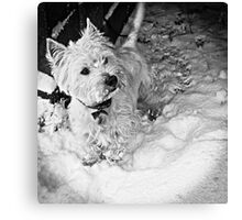This is Snow More Fun Canvas Print