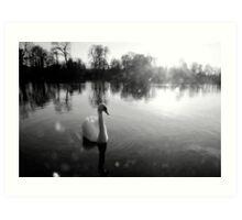Crystal swan Art Print