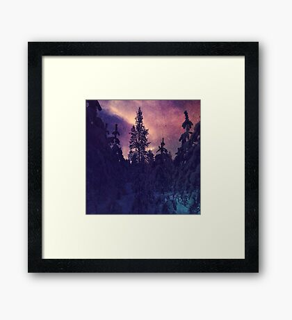Purple coloured forest Framed Print