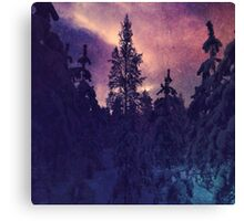 Purple coloured forest Canvas Print