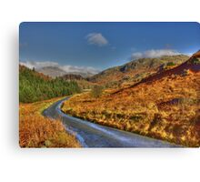 Duddon Valley Road  - Lake District Canvas Print