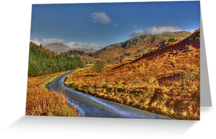 Duddon Valley Road  - Lake District by Trevor Kersley