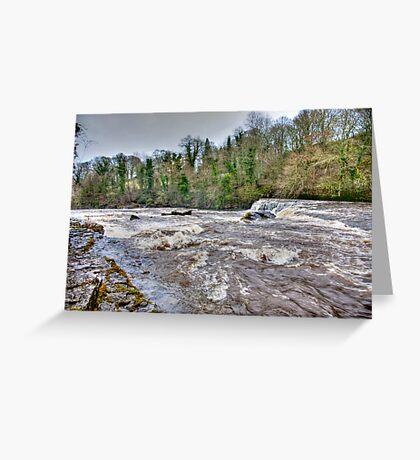 River Ure - Aysgarth-Yorks Dales Greeting Card