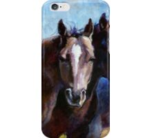 Four Horses iPhone Case/Skin