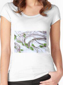 Clematis Seeds Macro  Women's Fitted Scoop T-Shirt