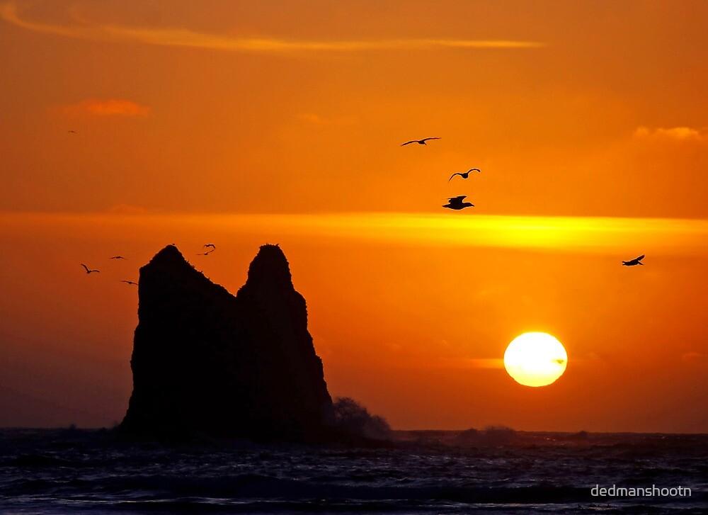 sunset activity at 'the notch', la push, washington, usa by dedmanshootn